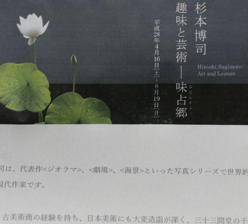 _MG_0081.JPG